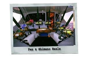 The Rebel- Virginia Beach Offshore Fishing Charter Boat