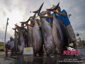 Big Eye Tuna Fishing Photos