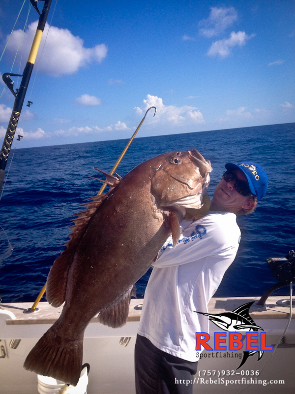 Fishing photos grouper tilefish va beach fishing charter for Charter fishing virginia beach
