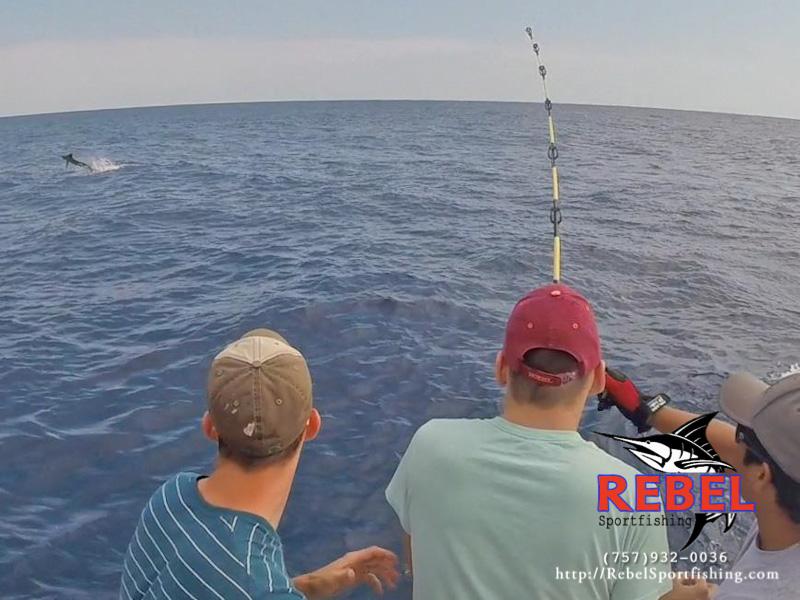 Fishing photos marlin va beach fishing charter boat for Va beach fishing