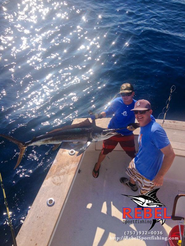 Fishing photos sailfish va beach fishing charter boat for Va beach fishing