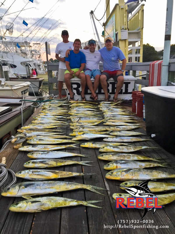 Fishing photos mahi va beach fishing charter boat for Charter fishing virginia beach