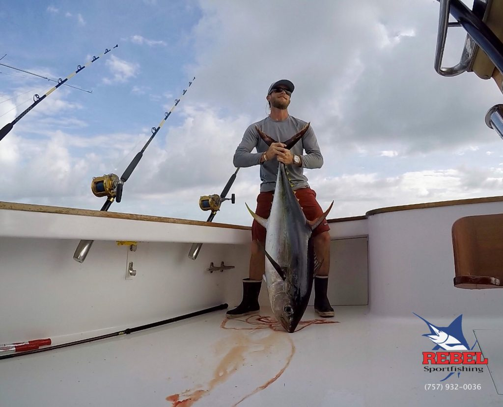 Deep Sea Fishing Charters Virginia Beach Yellowfin Tuna Picture