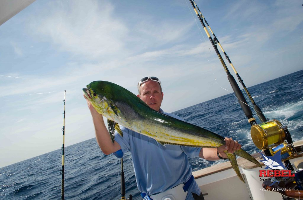Deep Sea Fishing Charters Virginia Beach Mahi Picture